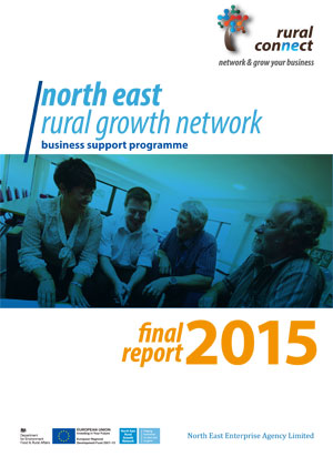 RGN Business Support Service Final Report 2015